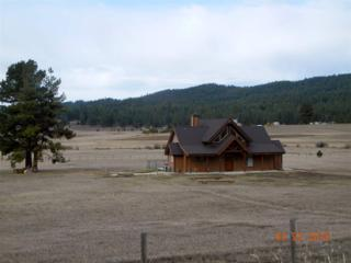 175  Lantern Way  , Cascade, ID 83611 (MLS #98582219) :: Core Group Realty