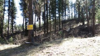 0  Forest Trail Rd.  , Garden Valley, ID 83622 (MLS #98582376) :: Core Group Realty