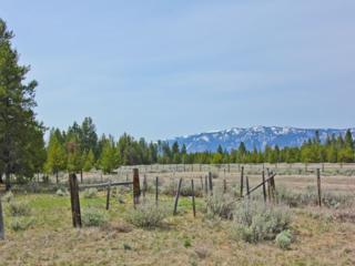 TBD  Highway 55  , Donnelly, ID 83615 (MLS #98585088) :: Core Group Realty