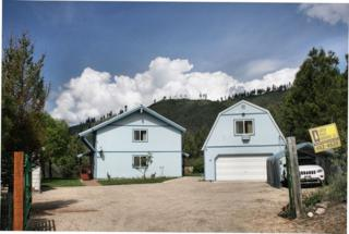 22  Sellman Dr  , Lowman, ID 83637 (MLS #98589020) :: Core Group Realty