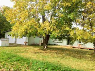 3299  Lower Bluff Rd  , Emmett, ID 83617 (MLS #98571839) :: Core Group Realty