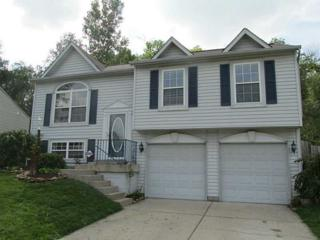 3740  Owster Lane  , Indianapolis, IN 46237 (MLS #21311979) :: The Gutting Group LLC