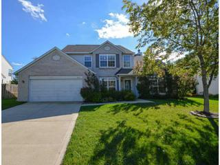 6625  Wolverine Way  , Indianapolis, IN 46237 (MLS #21319623) :: The Gutting Group LLC