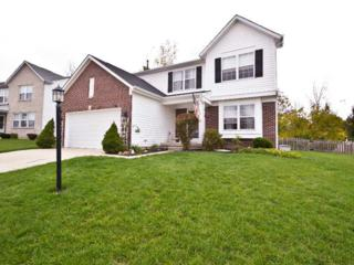 2429  Ring Necked Drive  , Indianapolis, IN 46234 (MLS #21320822) :: The Gutting Group LLC