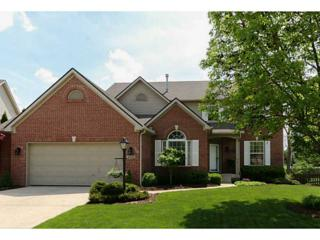 6433  Falling Tree Way  , Indianapolis, IN 46236 (MLS #21352506) :: The Evelo Team