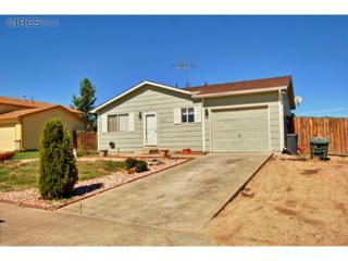 517 E 24th St Rd  , Greeley, CO 80631 (MLS #719223) :: Kittle Team - Coldwell Banker