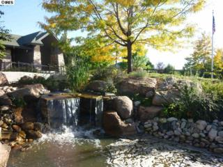 5851  Dripping Rock Ln  206, Fort Collins, CO 80528 (MLS #731248) :: Kittle Team - Coldwell Banker