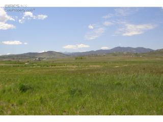 1108  Shelby Dr  , Berthoud, CO 80513 (MLS #749408) :: The Colley Team @ Remax Alliance