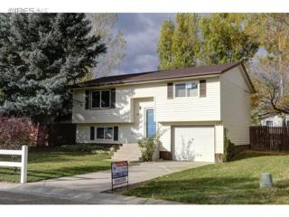 8201  Mummy Range Dr  , Fort Collins, CO 80528 (MLS #749780) :: The Colley Team @ Remax Alliance