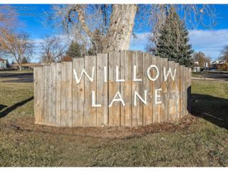 3029  Ross Dr  8, Fort Collins, CO 80526 (MLS #751508) :: The Colley Team @ Remax Alliance