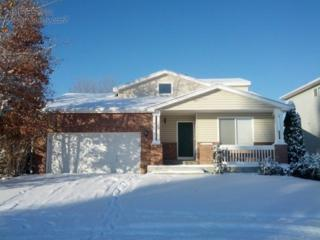 1157  Fall River Cir  , Longmont, CO 80504 (MLS #751545) :: The Colley Team @ Remax Alliance