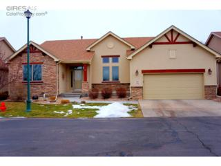 6845  Poudre River Rd  5, Greeley, CO 80634 (MLS #754488) :: The Colley Team @ Remax Alliance