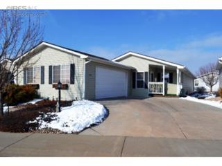 943  Vitala Dr  , Fort Collins, CO 80524 (MLS #756758) :: The Colley Team @ Remax Alliance
