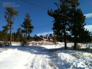164  Gordon Creek Rd  , Boulder, CO 80302 (MLS #758980) :: The Byrne Group