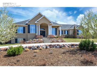 733  Terra View Cir  , Fort Collins, CO 80525 (MLS #760135) :: The Colley Team @ Remax Alliance