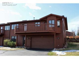 1437  Matthew Cir  , Estes Park, CO 80517 (#761464) :: The Peak Properties Group
