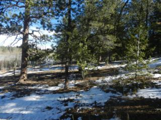 0  Monoma Rd  , Red Feather Lakes, CO 80545 (MLS #751407) :: The Colley Team @ Remax Alliance