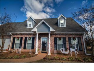 517  Wildberry Dr  , Pearl, MS 39208 (MLS #270190) :: RE/MAX Alliance