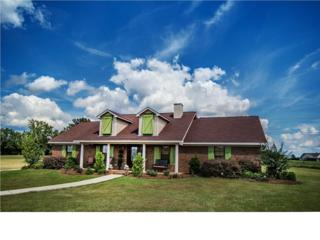 1332  Hwy 49  , Flora, MS 39071 (MLS #270498) :: RE/MAX Alliance