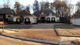138  Wind Dance Dr  , Madison, MS 39110 (MLS #272656) :: RE/MAX Alliance