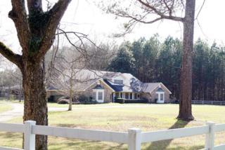 1245  Springwater Ranch Rd  , Brandon, MS 39042 (MLS #273395) :: RE/MAX Alliance