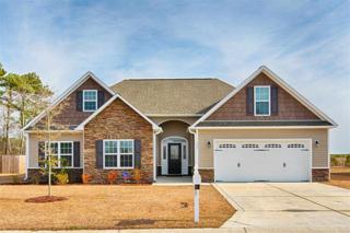 353  Merin Height Road  , Jacksonville, NC 28546 (MLS #163611) :: Coldwell Banker Sea Coast Advantage