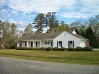 702 E Puller Drive  , Burgaw, NC 28425 (MLS #166726) :: Coldwell Banker Sea Coast Advantage