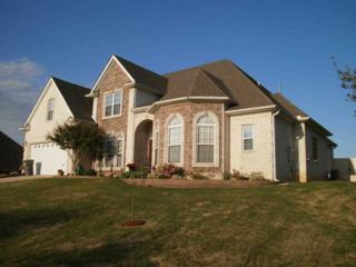 4304  Jenni Lane  , Jonesboro, AR 72401 (MLS #10055550) :: Fred Dacus Associates