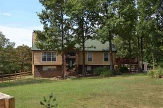 180  Cr 710  , Jonesboro, AR 72401 (MLS #10058230) :: Fred Dacus Associates