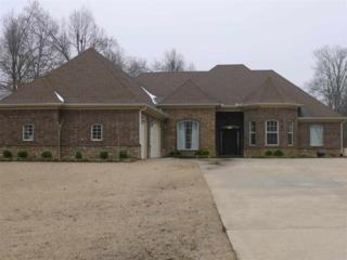 4205  Jada Cove  , Jonesboro, AR 72404 (MLS #10059136) :: Fred Dacus Associates