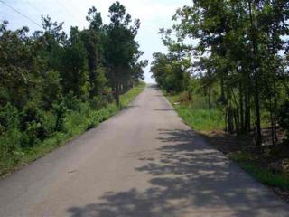 1628  Horne Drive  , Jonesboro, AR 72404 (MLS #10059698) :: Fred Dacus Associates