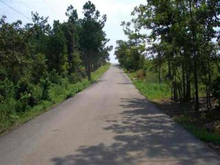 1622  Horne Drive  , Jonesboro, AR 72404 (MLS #10059699) :: Fred Dacus Associates