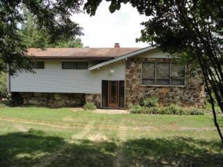 4000  Renee  , Jonesboro, AR 72404 (MLS #10056865) :: Fred Dacus Associates