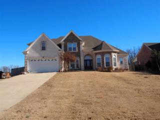 4304  Jenni Lane  , Jonesboro, AR 72404 (MLS #10058495) :: Fred Dacus Associates