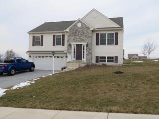 165  Bryn Way  , Mount Wolf, PA 17347 (MLS #231021) :: Berkshire Hathaway Homesale Realty
