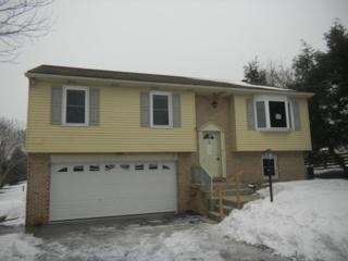 1033  Brunnerville Road  , Lititz, PA 17543 (MLS #232464) :: Berkshire Hathaway Homesale Realty