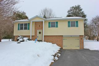40  Buttonwood Drive  , Lititz, PA 17543 (MLS #232465) :: Berkshire Hathaway Homesale Realty