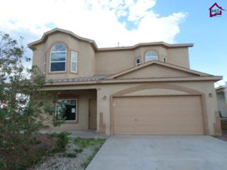 4469  Hillsboro Loop  , Las Cruces, NM 88012 (MLS #1402583) :: Steinborn & Associates Real Estate