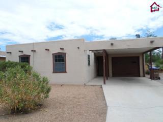 835  Mimbres Street  , Las Cruces, NM 88001 (MLS #1402597) :: Steinborn & Associates Real Estate