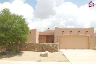 6524  Phoenix Street  , Las Cruces, NM 88012 (MLS #1402611) :: Steinborn & Associates Real Estate