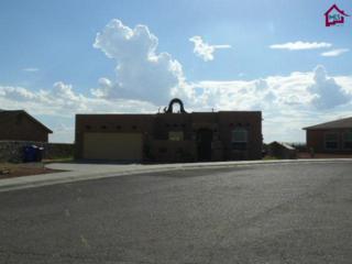3549  Roma Drive  , Las Cruces, NM 88012 (MLS #1402650) :: Steinborn & Associates Real Estate