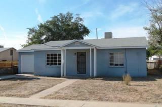 1113  Gardner Avenue  , Las Cruces, NM 88001 (MLS #1402665) :: Steinborn & Associates Real Estate