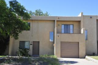 1611  Sunrise Avenue  , Las Cruces, NM 88001 (MLS #1402679) :: Steinborn & Associates Real Estate