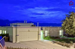 2330  Stagecoach Drive  , Las Cruces, NM 88011 (MLS #1402685) :: Steinborn & Associates Real Estate