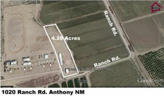 1020  A Ranch Road  , Anthony, NM 88021 (MLS #1402686) :: Steinborn & Associates Real Estate
