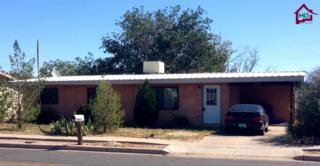 1705 S Espina Street  , Las Cruces, NM 88001 (MLS #1402688) :: Steinborn & Associates Real Estate