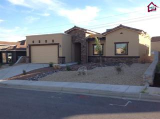 7321  Vista De Sobre Drive  , Las Cruces, NM 88012 (MLS #1402756) :: Steinborn & Associates Real Estate