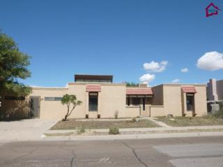 3408  Jupiter Road  , Las Cruces, NM 88012 (MLS #1402773) :: Steinborn & Associates Real Estate