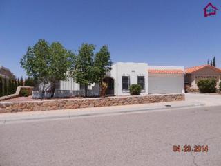 1059  La Plata Drive  , Las Cruces, NM 88007 (MLS #1402784) :: Steinborn & Associates Real Estate