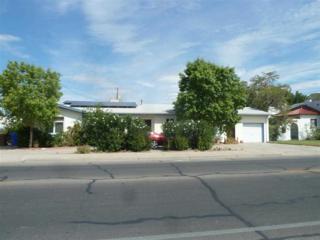 1104 N Alameda Boulevard  , Las Cruces, NM 88005 (MLS #1402863) :: Steinborn & Associates Real Estate